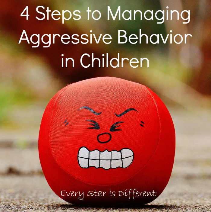 4 Steps to Managing Aggressive Behaviors