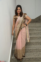Shilpa Chakravarthy in Lovely Designer Pink Saree with Cat Print Pallu 007.JPG