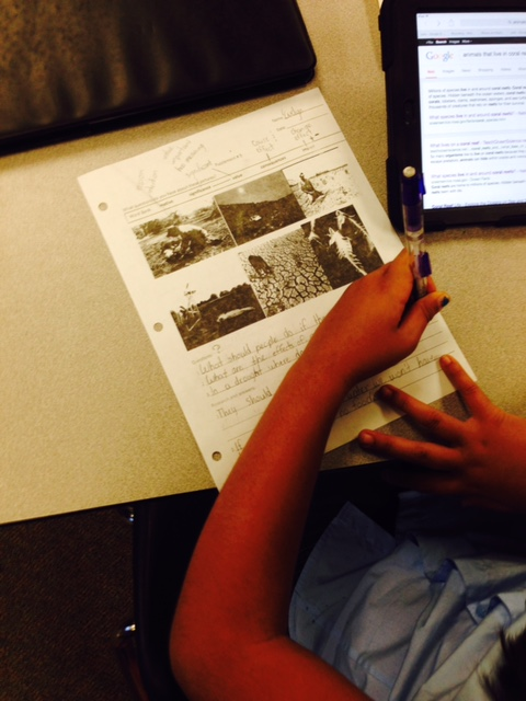 Students now pose questions about the photo and research to find answers.