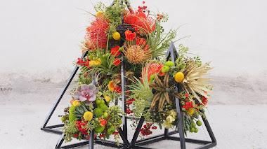 Flora, festival de instalaciones florales en patios institucionales de Córdoba
