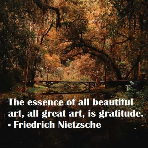 Gratitude quotes and sayings that inspire thankfulness