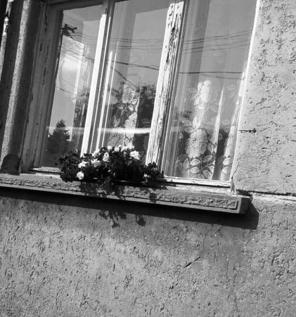 Szomorkás és kopott, fekete-fehér, elhúzott függönyű ablak, amely mögött egy látogatót várnak teával és linzerrel.