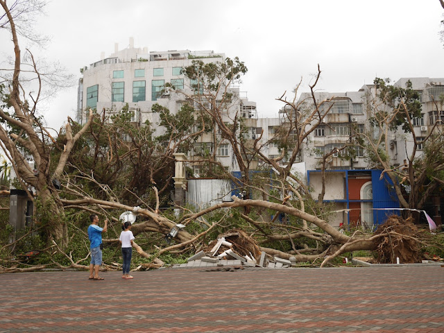 damage from Typhoon Hato at the Bay Bar Street in Zhuhai