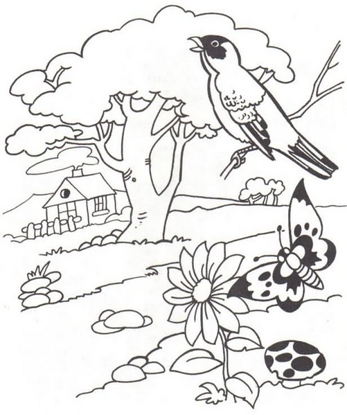 Dia Da Natureza 04 Out 30 Desenhos Para Colorir Pintar