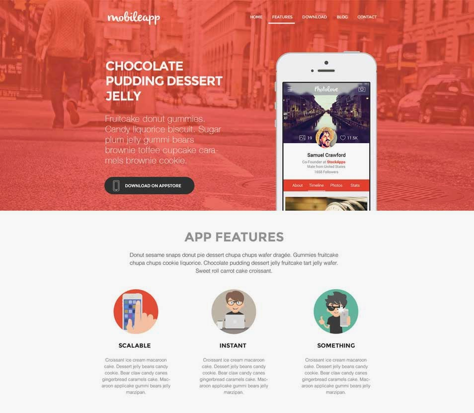 Application Landing Page Template PSD