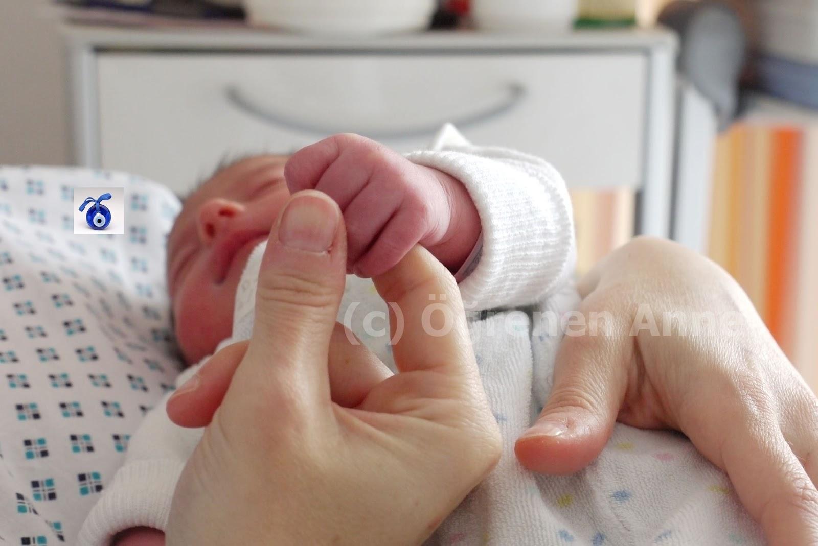 Hamilelik Sorunları, Doğum ve Doğum Sancıları, Doğum Sonrası Bakımı