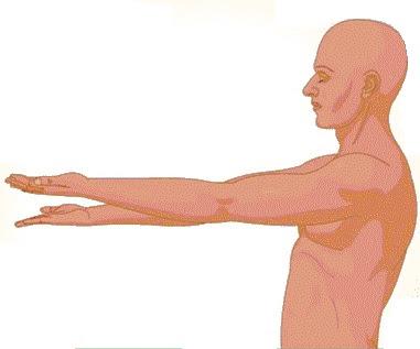 What is Pronator Drift - Definition, Symptoms, Causes, Treatment
