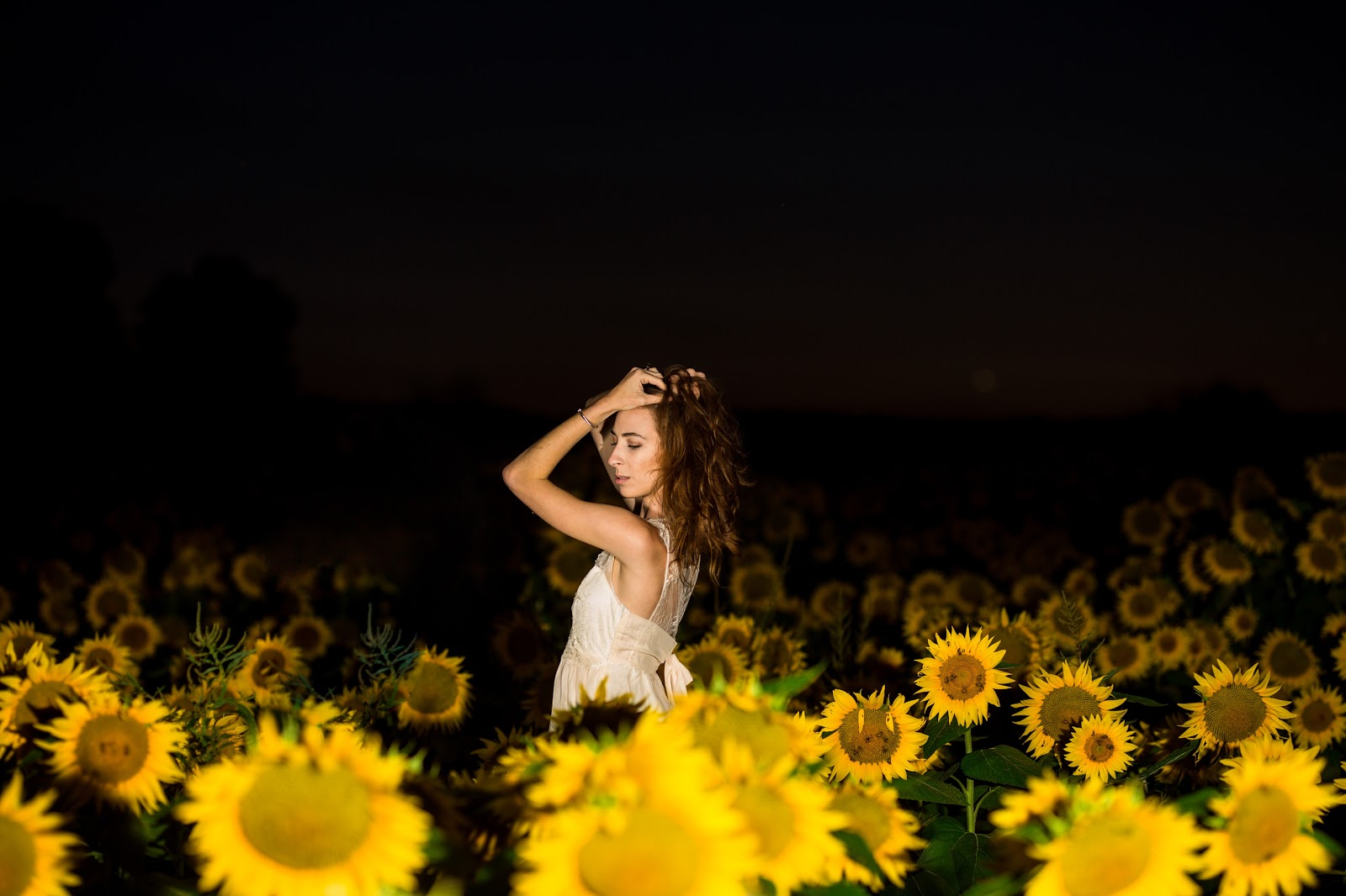 eGolden Moments Photography sunflower field photos