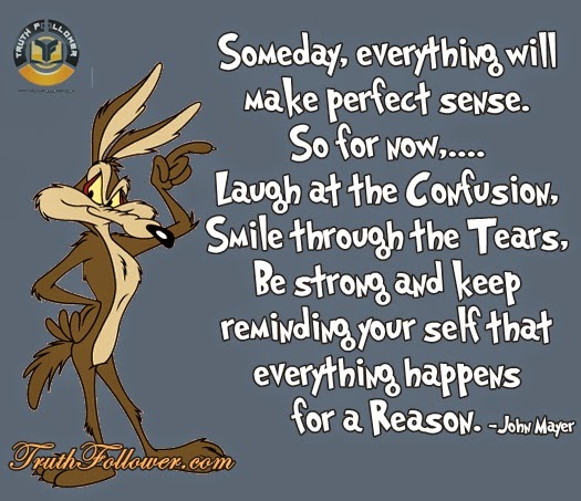 Make Sense Quotes: Someday, Everything Will Make Perfect Sense