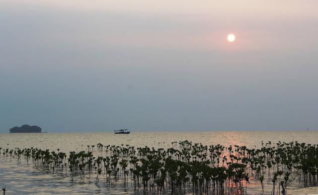 pulau karang bongkok, kepulauan seribu