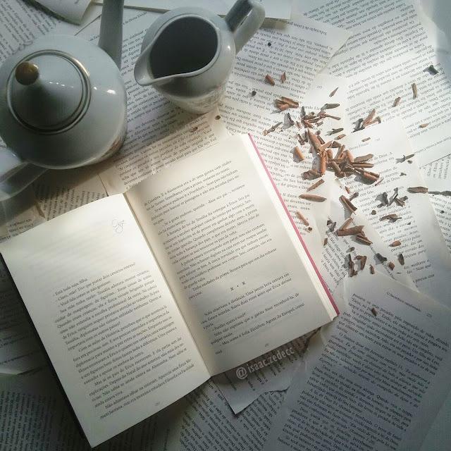 corpo do livro érica da autora larissa barros leal publicado pela editora novo seculo