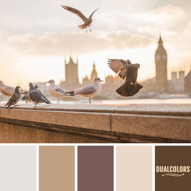 color_paleta_167