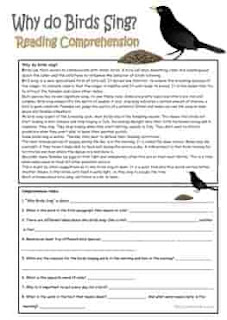 why-do-birds-sing-reading-comprehension-wordsearch_key-ESL-EFL-downloadable-printable-worksheets-practice-exercises-and-activities-to-teach-about-birds-picture-dictionaries
