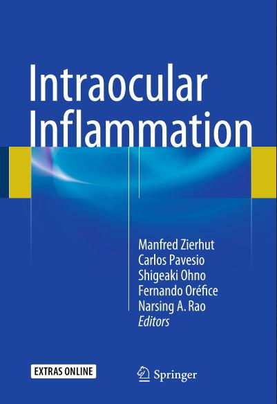 Intraocular Inflammation (2016) [PDF]