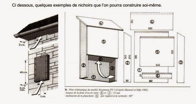 fabriquer maison pour chauve souris ventana blog. Black Bedroom Furniture Sets. Home Design Ideas