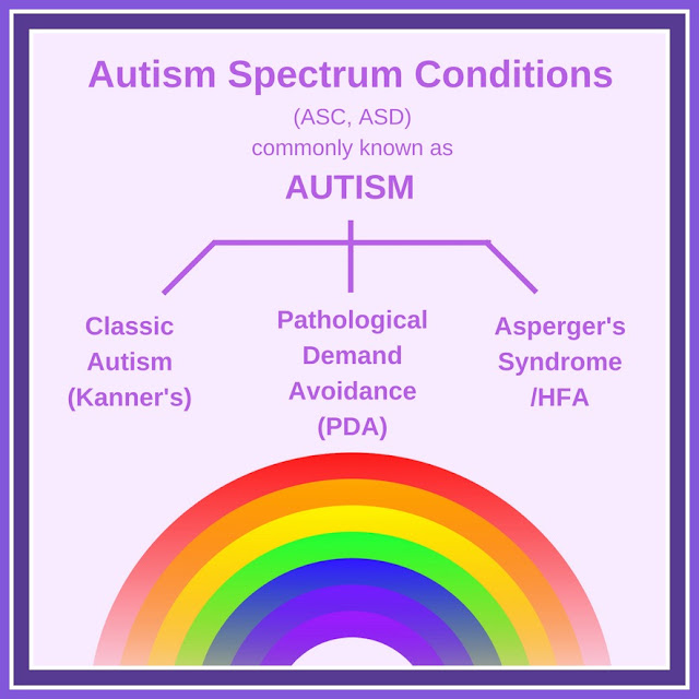 image showing 3 types of autism spectrum condition