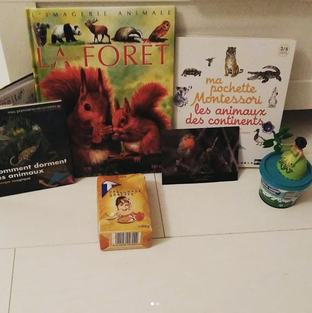 > Comment dorment les animaux  > Les animaux de la forêt  > Ma pochette Montessori les animaux des continents