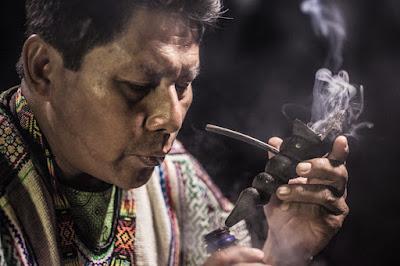 shaman mapacho