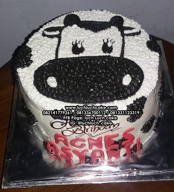 Luch Luch Cake Kue Tart Ulang Tahun Sederhana Tema Sapi