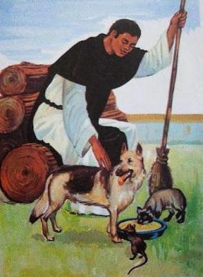 Los animales de Fray Martín