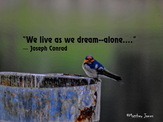 'We live as we dream ... alone' - Joseph Conrad