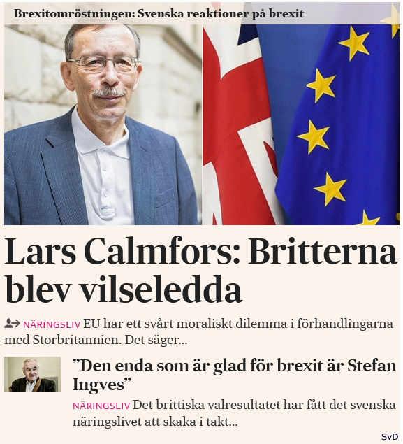 Signerat hanne kjoller svenskt val i danmark