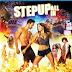 Step Up All In 2014 Dual Audio BRRip 480p 300mb ESub