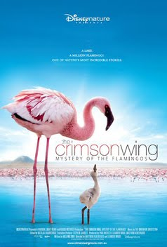Crimson Wing Mystery of the Flamingos (2008) Dual Audio Hindi 300MB BluRay 480p