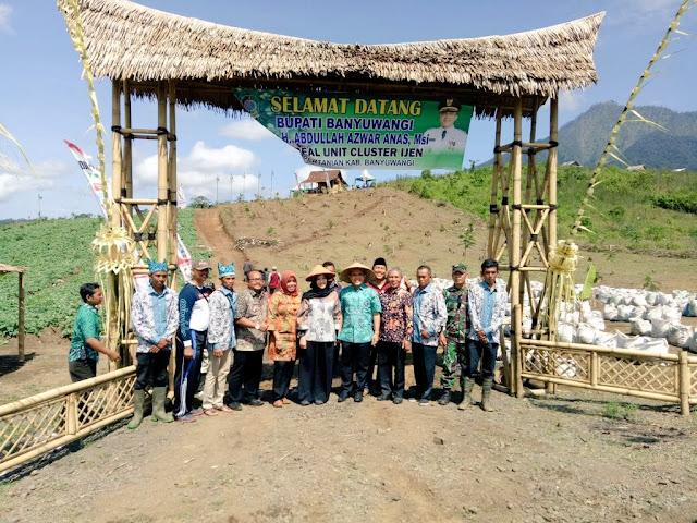 Agrowisata Cluster Ijen Banyuwangi.