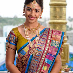 Richa Gangopadyay in Saree Latest Stills