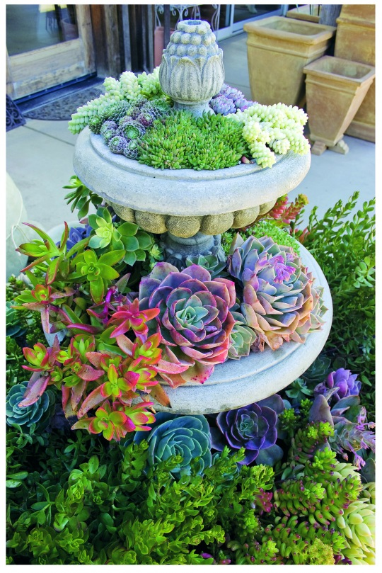 Sure Fit Slipcovers Creative Garden Planters To Inspire