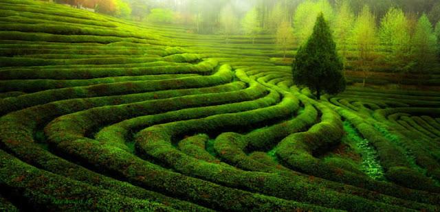 Hwasun County, Korea Selatan