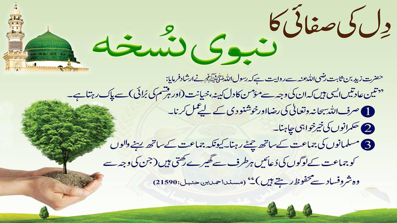 Islamic Quotes - Dil Ki Safai Ka Nabvi Nuskha - Islami Desk