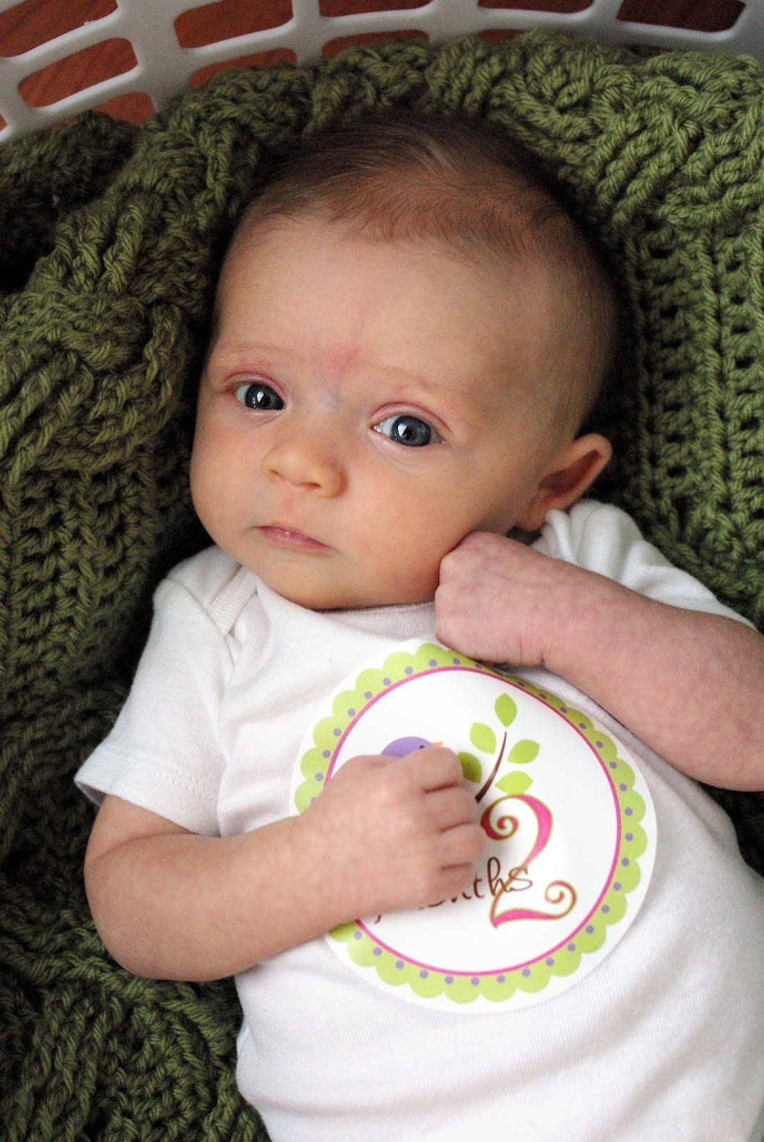 Amanda's Life Commentary: 2 Months Old!