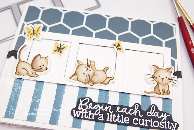 Heather's Hobbie Haven - No-Line Watercolor - Honey Bee Stamps - Oh My Whiskers