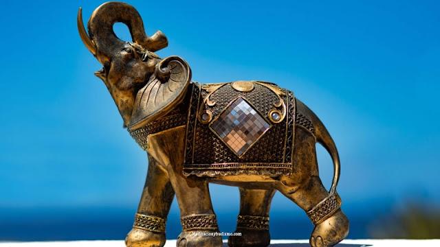 Descubre porque los elefantes son de la buena suerte