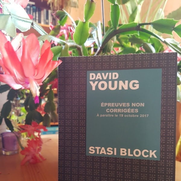 Stasi block de David Young