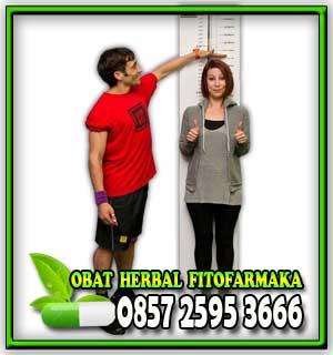 obat peninggi badan, tinggi badan herbal, cara tinggi badan, solusi tinggi badan