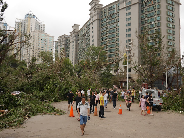 damage from Typhoon Hato at the Bay Bar Street at Shuiwan Road in Zhuhai