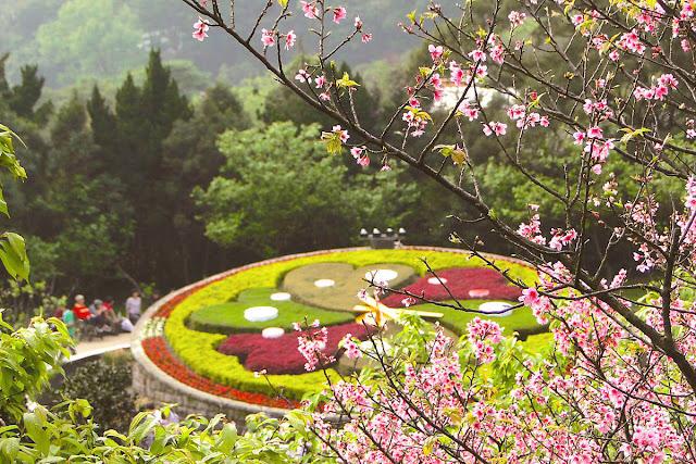 Ở Đài Bắc, Vườn Quốc gia Dương Minh Sơn là một điểm tham quan ngoạn mục để ngắm những cây anh đào nở rộ. Vườn Quốc gia vùng núi này có các suối nước nóng, hồ chứa lưu huỳnh, các đường mòn đi bộ đường dài và ngọn núi lửa ngưng hoạt động Thất Tinh.