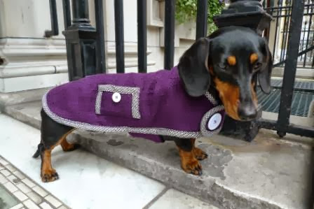 Guest post - WIN a simply spiffing dachshund winter coat worth £95!