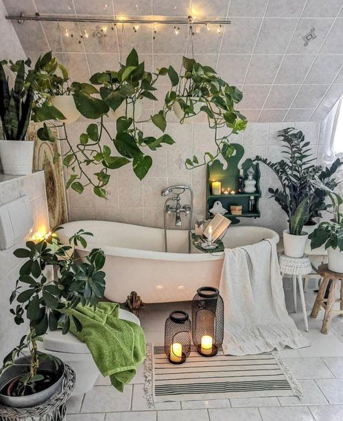 Hdi Home Design Ideas: 30 Chic Ideas For Home Decor With Houseplants