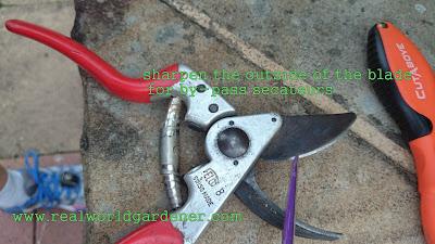 1-Sharpening%2Bsecs2.JPG