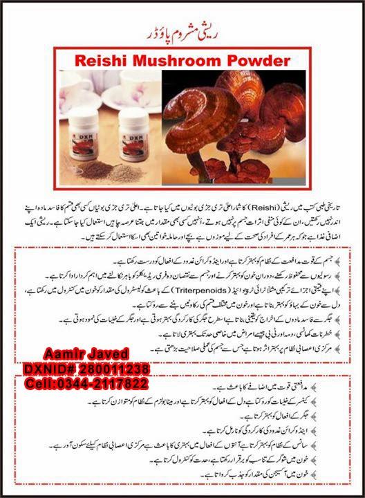 Reishi Mushroom Powder Urdu
