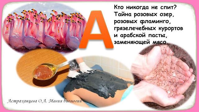 АБВГД-ейка-приемы-педагогики