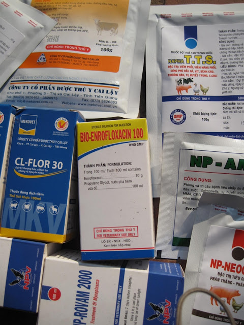 Một số loại kháng sinh của các công ty Thuốc thú y