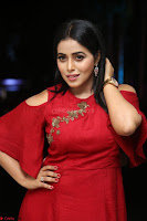 Poorna in Maroon Dress at Rakshasi movie Press meet Cute Pics ~  Exclusive 02.JPG