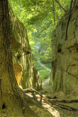 Wildcat Den State Park, Iowa, USA