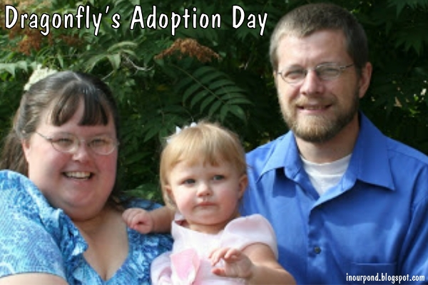 How I Became Your Mom, Dragonfly- an adoption article from In Our Pond