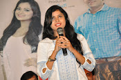 Ameerpetlo audio success meet photos-thumbnail-20